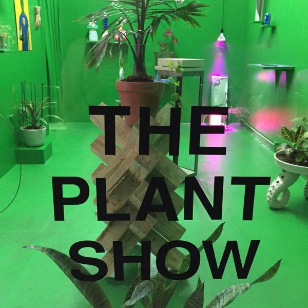The Plant Show 99¢ Plus Gallery
